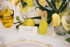Limoncello wedding palette